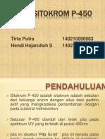 Enzim Sitokrom P-450