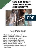 Diagnosa Dan Terapi Kolik Pada Kuda Serta Pemeriksaannyaa