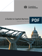 Guide to Capital Markets