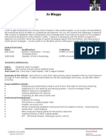 CV Example (2)