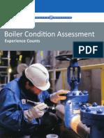 Boiler Condition Assessment