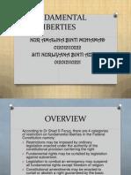 Fundamental Liberties