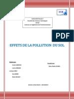 Rapport Ecotoxicologie (Réparé)