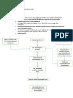 Mekanisme Atherosclerosis Per Factor Resiko