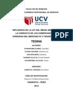 Original Tesina Final