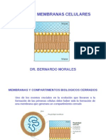 La Membrana Biologica