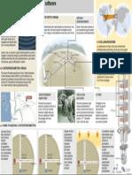 Antenna interferometro