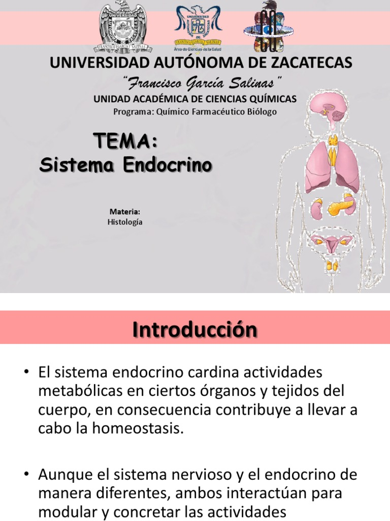 Contemporáneo Sistema Endocrino Para Colorear Patrón - Ideas Para ...