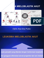Case Slide LMA
