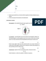 Informe N_5 Fisica II