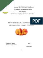 Linia Tehnologica de Producere a Nectarului de Piersici Cu Pulpa