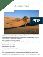 As 20 Lições Espirituais Extraídas Do Deserto