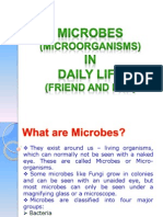 Microbes in Daily Life.pptx