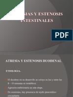 atresiaintestinal2-111018171812-phpapp01