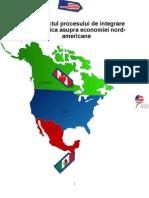 Impactul Procesului de Integrare Economica Asupra Economiei Nord-Americane (2)
