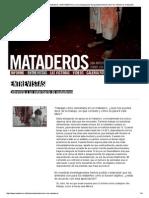 Entrevista a Un Veterinario de Mataderos _ MATADEROS __ Una Investigación de Igualdad Animal Sobre Los Mataderos en España