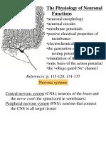 01 Neuronal Function