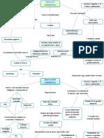 Mapa Mental_impacto Ambiental_educacion Ambiental