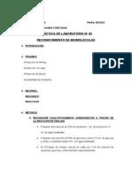 GUÍA PRÁCTICA LABORATORIO N° 06. BIOMOLÉCULAS