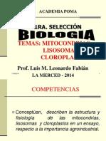 MITOCONDRIAS 2014