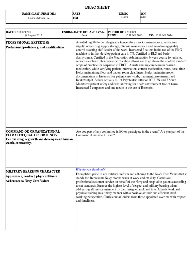 23 Brag Sheet  PDF  Nursing  Patient