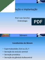 fecundação1.ppt