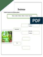 Ficha Ecosistemas 7mo 34 Copias