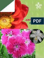 maquetaflores21definitiva-110322195940-phpapp01
