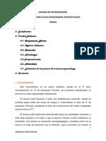 178919917 Alumno Con Altas Capacidades Intelectuales Unidad Didactica de Pedagogia Terapeutica.unlocked