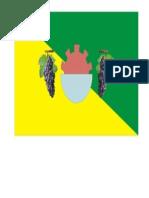 Bandera de Ica