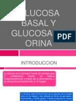 Glucosa en Orina y Basal. Expo Final
