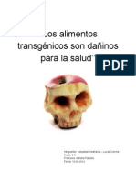 ALIMENTOS TRANSGENICOS DAÑINOS