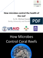 How Microbes Control Coral Reefs by Dr. Michael Sweet