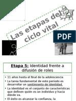 Etapas Del Ciclo Vital