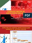 Sistema Mayor de Histocompatibilidad