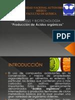 Presentación Final Produccion de Acidos Organicos