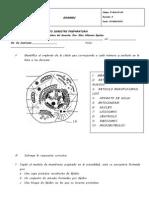 ORDINARIO BIOLOGIA2014