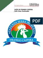 Criacao de Frango Caipira