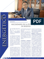 10 Articulo Arnez Petroquimica 20-01-2014
