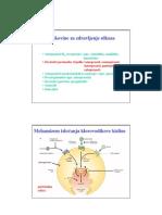 inhibitorji protonske črpalke