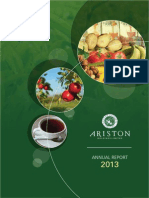 Ariston Annual Report 2013