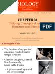 3. anatomi dasar 1.pdf