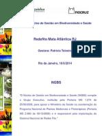 140616 Apresentação Alerj 16-6-2014 - Patrícia Teixeira - Fiocruz