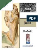 Cuello 2 Parietal Triangulos