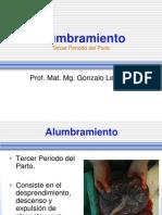 Alumbramiento_2014