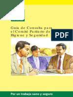 Guía de consultas para el Comité Paritario de Higiene y Seguridad.pdf