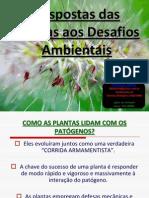 Respostas Das Plantas Aos Desafios Ambientais