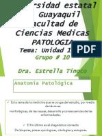 Patologia - Unidad 1 y 2