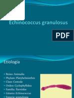 Echinococcus Granulosus,