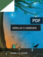 SEMILLAS de SABIDURIA - Mi Encuentro Con El Rebe - Libro Editorial NER